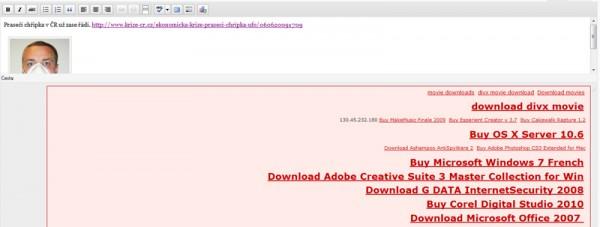 Pokus o hacknutí WordPress MU?