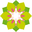 Thajské masáže Brno - SENstudio